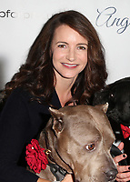 Josh Wolf05 November 2017 - Hollywood, California - Kristin Davis. 7th Annual Stand Up For Pits held at Avalon Hollywood. <br /> CAP/ADM/FS<br /> &copy;FS/ADM/Capital Pictures