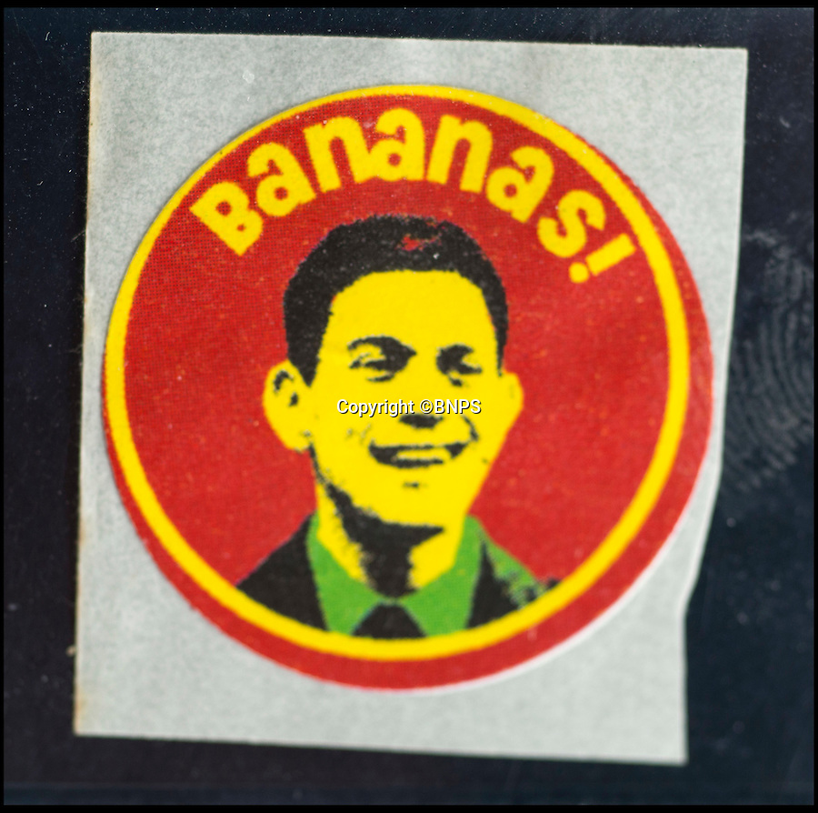 BNPS.co.uk (01202 558833)<br /> Pic: TomWren/BNPS<br /> <br /> A David Milliband sticker which was attached to bananas given out during the Conservative Party conference in Birmingham in 2008.<br /> <br /> Pensioner Margaret Archer has a really ap-peeling hobby - as she has become one of the world's leading banana sticker collectors.<br /> <br /> The 73-year-old has amassed over 6,500 small adhesive labels that she has peeled from the yellow fruit.<br /> <br /> Margaret, from Bournemouth, Dorset, keeps her remarkable collection of stickers in A4 folders, listing them alphabetically and by country.