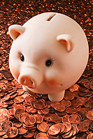 Piggy bank and pennies