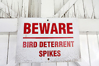 General view of the Beware Bird Deterrent Spikes signage ahead of Sussex Sharks vs Essex Eagles, NatWest T20 Blast Cricket at The 1st Central County Ground on 18th August 2017