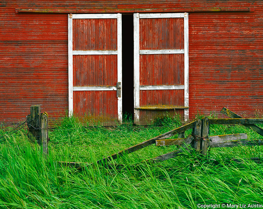 Whitman County, WA      <br /> Weathered fence line in front of a set of barn doors on the Kelley Homestead barn near Oakesdale, in the Palouse