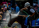 OCEANPORT, NJ - JULY 29: An outrider hoses down their pony on Haskell Invitational Day at Monmouth Park Race Course on July 29, 2018 in Oceanport, New Jersey. (Photo by Scott Serio/Eclipse Sportswire/Getty Images)