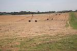 Irrigation machinery on fields, Suffolk farming landscape scenery, East Anglia, England
