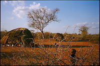 'Bore Hole 11', NE Kenya, March 2006.More than 4 millions people are affected in the region by the worst drought in man's memory. The livestock is decimated and a whole lifestyle threatened.