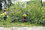 Forestry Crews clean up storm damage on Hewetson Road in Denville, New Jersey