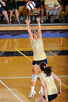 12 October 2008:  FIU setter Natalia Valentin (9) sets a shot in the FIU victory 3-0 (25-18, 25-17, 25-20) over North Texas at Panther Arena in Miami, Florida.