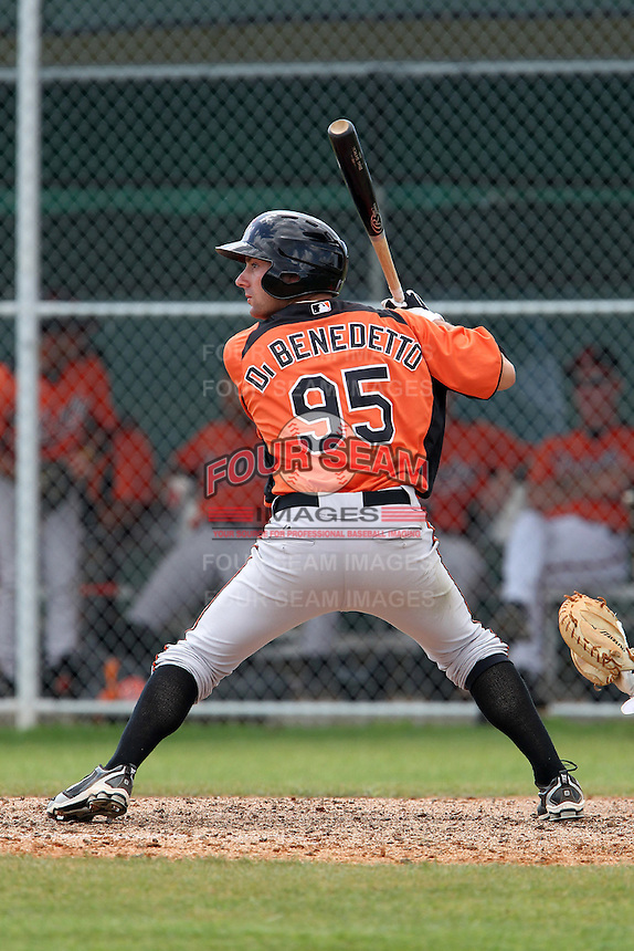 Baltimore Orioles Thomas DiBenedetto #95 during a spring training game against the Tampa Bay Rays at the Buck O'Neil Complex on March 21, 2012 in Sarasota, Florida.  (Mike Janes/Four Seam Images)