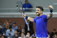 Janko Tipsarevic (Ser)<br /> Flushing Meadows 29/08/2017<br /> Tennis US Open 2017 <br /> Foto Couvercelle/Panoramic/Insidefoto