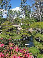 Earl Burns Miller Japanese Garden in Long Beach