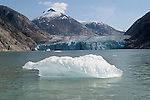Alaska, Cruising the Southeast wilderness waterways on the Spirit of Discovery.  Endicott Arm and Dawes Glacier, scenery, glacier and cruise ship..Photo #: alaska10372 .Photo copyright Lee Foster, 510/549-2202, lee@fostertravel.com, www.fostertravel.com.