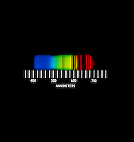SPECTRUM ANALYSIS OF NEON:.Neon  Abssorption Spectrum..Viewed with a direct reading diffraction spectrometer. With nanometer scale.