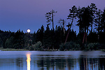 Moonset at dawn over forest trees at Manzanita Lake, Lassen Volcanic National Park, California