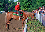 Racing - 1974 through 1999 (also see specific older Saratoga galleries)
