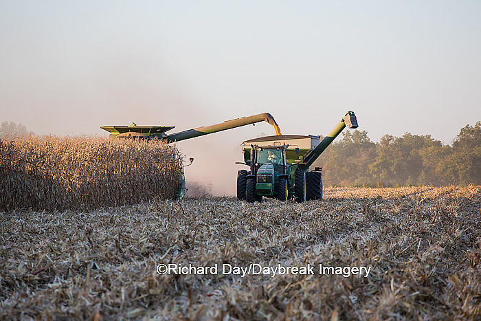 63801-06702 John Deere combine harvesting corn while unloading corn into wagon, Marion Co., IL