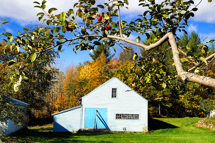 An apple orchard barn on a small farm in fall.