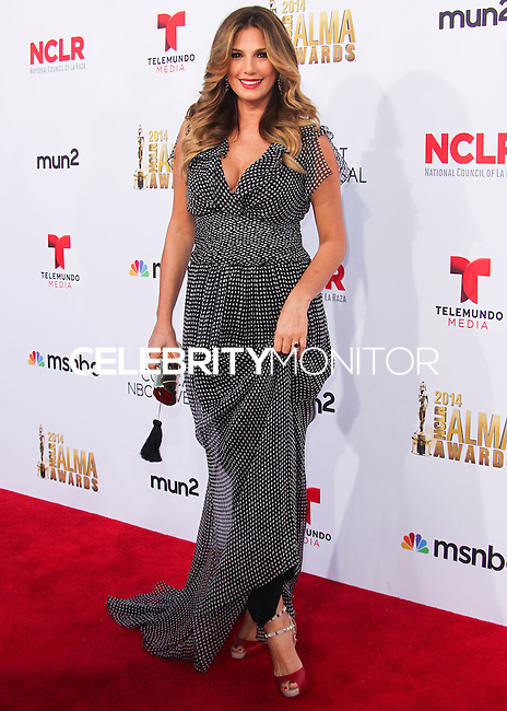 PASADENA, CA, USA - OCTOBER 10: Daisy Fuentes arrives at the 2014 NCLR ALMA Awards held at the Pasadena Civic Auditorium on October 10, 2014 in Pasadena, California, United States. (Photo by Celebrity Monitor)
