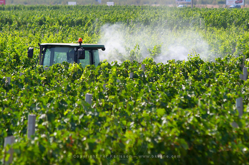 A vineyard tractor spraying with treatment for diseases between the rows of vines. Sea of vines. Vranac grape variety. Vineyard on the plain near Mostar city. Hercegovina Vino, Mostar. Federation Bosne i Hercegovine. Bosnia Herzegovina, Europe.