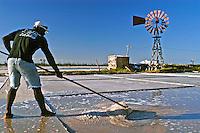 Extração de sal em salinas de Cabo Frio, Rio de Janeiro. 2004. Foto de Ricardo Azoury.