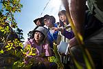 0819Sci-field school