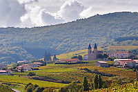 Vineyard. The village with church. Morgon, Beaujolais, France