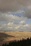 Israel, Southern Hebron Mountain, a view from Yatir Forest Scenic Route