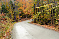 Autumn country road, Vermont, VT, USA