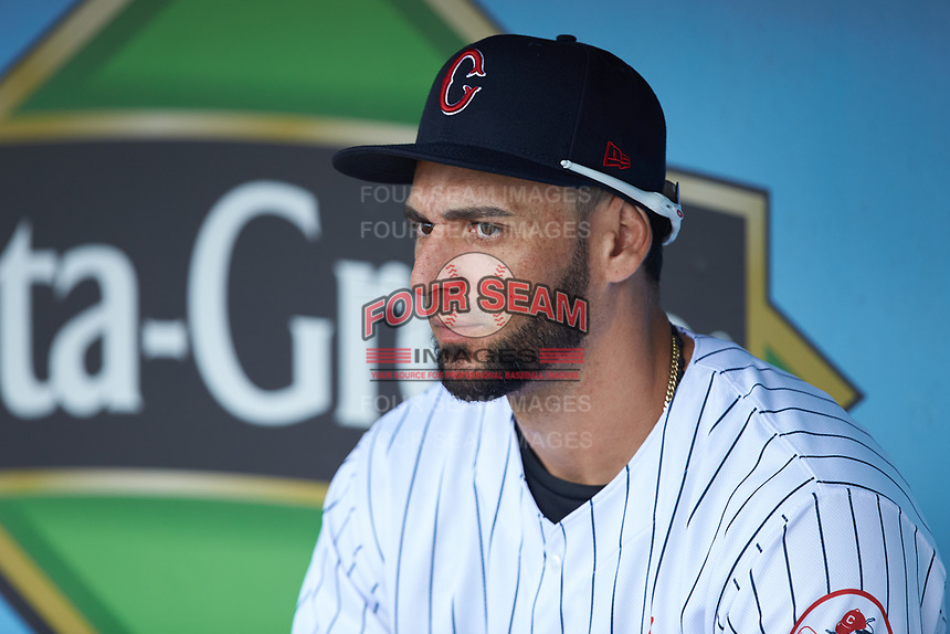 Paulo Orlando (16) of the Charlotte Hornets prior to the game against the Louisville Bats at BB&T BallPark on June 22, 2019 in Charlotte, North Carolina. The Hornets defeated the Bats 7-6. (Brian Westerholt/Four Seam Images)