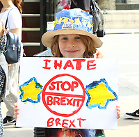AUG 7 Anti Brexit Protest outside Cabinet Office