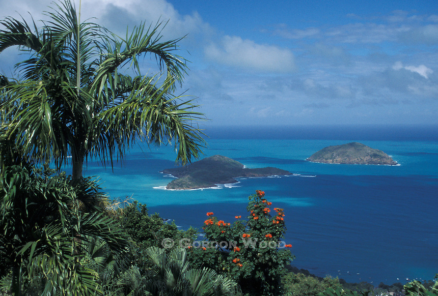 Small Islands and Azure Seas as seen from St. Thomas