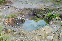 SAVEOCK WATER, CORNWALL, ENGLAND - AUGUST 03: A general view of Neolithic mirror pool lined with white quartz on August 3, 2008 in Saveock Water, Cornwall, England. Excavated by archaeologist Jacqui Wood and her team. (Photo by Manuel Cohen)