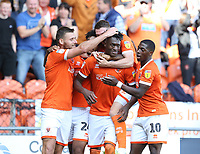 Blackpool's Armand Gnanduillet is swamped by team-mates as he celebrates scoring his side's equalising goal to make the score 1-1<br /> <br /> Photographer Stephen White/CameraSport<br /> <br /> The EFL Sky Bet League One - Blackpool v Portsmouth - Saturday 31st August 2019 - Bloomfield Road - Blackpool<br /> <br /> World Copyright © 2019 CameraSport. All rights reserved. 43 Linden Ave. Countesthorpe. Leicester. England. LE8 5PG - Tel: +44 (0) 116 277 4147 - admin@camerasport.com - www.camerasport.com