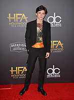 LOS ANGELES, CA. November 04, 2018: Timothee Chalamet at the 22nd Annual Hollywood Film Awards at the Beverly Hilton Hotel.<br /> Picture: Paul Smith/Featureflash