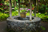 Wishing well. Hawaii Tropical Botanical Gardens. Hawaii, The Big Island.