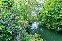 France, Indre-et-Loire (37), Azay-le-Rideau, parc et château d'Azay-le-Rideau au printemps, l'Indre