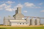 Metal grain elevator, steel storage tanks