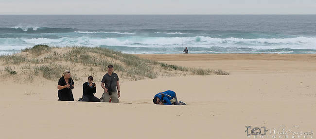 Almost buried in the sand. Workshop Attendees at our Seascapes & Sandunes  photography workshop in Port Stephens, NSW, Australia