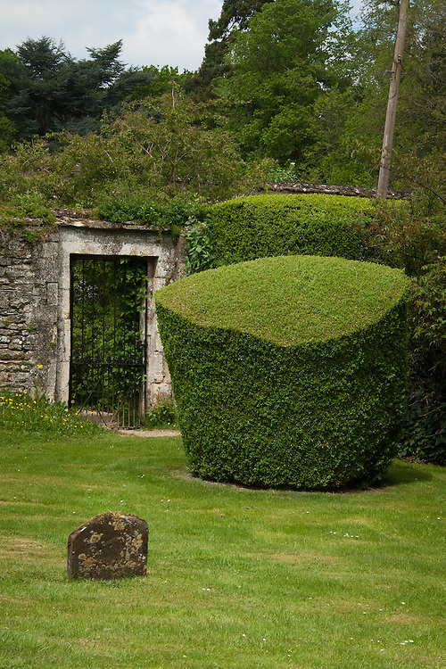 Box topiary in the graveyard of St Leonard & St James Church, Rousham House and Garden.