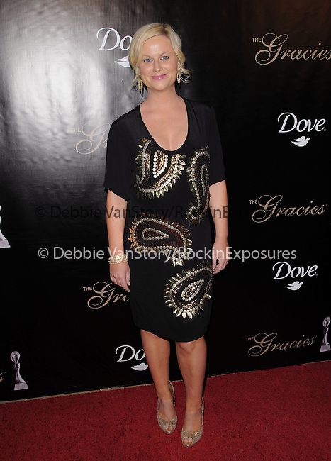 Amy Poehler at the Gracie Awards Gala held at The Beverly Hilton Hotel in Beverly Hills, California on May 25,2010                                                                   Copyright 2010  DVS / RockinExposures
