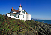 view of Crescent City's Battery Point lighthouse on a hillside over Pacific Ocean. California USA.