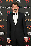 Julian Villagran attends 30th Goya Awards red carpet in Madrid, Spain. February 06, 2016. (ALTERPHOTOS/Victor Blanco)