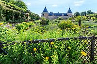 France, Loiret (45), Chilleurs-aux-Bois, château de Chamerolles et jardins renaissance, tanaisie au premier plan