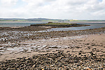 Coastal landscape looking inland at low tide, Holy Island, Lindisfarne, Northumberland, England, UK