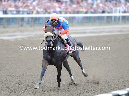 Superswift filly Elusive Heat wows the fans with a powerful performance