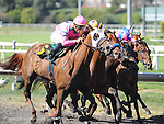 June 18, 2011.Blind Luck ridden by Garrett Gomez coming up on the outside and winning the Vanity Handicapat Hollywood Park, Inglewood, CA.