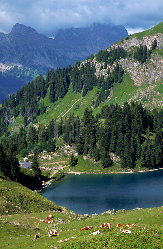 Lake Liosin, near Gstaad, Switzerland