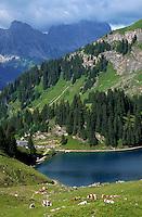 Lake Liosin, near Gstaad, Switzerland