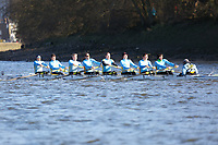 Crew: 125   Cambridge 99 (Anderson)   Op Devel<br /> <br /> Quintin Head 2019<br /> <br /> To purchase this photo, or to see pricing information for Prints and Downloads, click the blue 'Add to Cart' button at the top-right of the page.