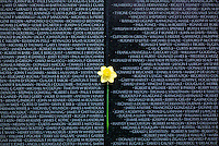 Vietnam Veterans War Memorial, daffodil against list of names #5414. Washington DC.