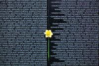 Vietnam Veterans War Memorial, daffodil against list of names #5414. Washington DC.