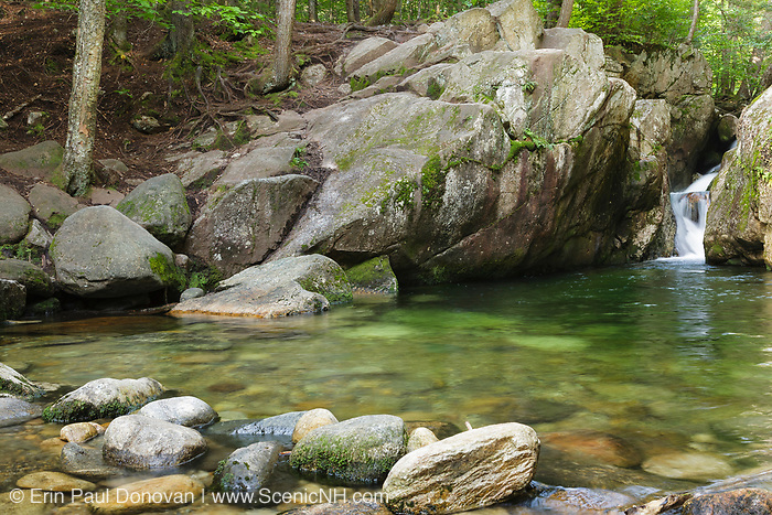 Emerald Pool along Charles Brook during the summer months. This pool is located off of Baldface Circle Trail in the Baldface-Royce Mountain range in the White Mountains of New Hampshire.
